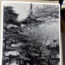 Postales: ANTIGUA POSTAL. PARQUE DE TOKYO, JAPON 1938. W. Lote 104274855