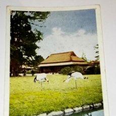 Postales: ANTIGUA POSTAL - JAPÓN, KORAKUEN OKAYAMA. Lote 118709091