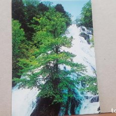 Postales: POSTAL ANTIGUA JAPON.- NIKKO. Lote 135664343