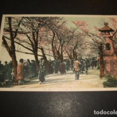 Postales: JAPON JAPAN ANTIGUA POSTAL OLD POSTCARD. Lote 140627666