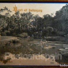Postales: GROET UIT BUITENZORG INDONESIA JAVA. Lote 147289654