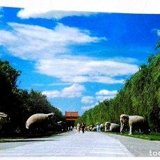 Postales: POSTAL - CHINA, LAS TUMBAS DE MING. Lote 174432194