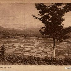 Postales: INDONESIE INDONESIA. VIEW ON THE PLAINS OF LELES. Lote 184320310