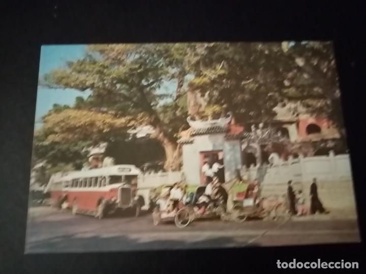Postales: Postales Macao. A partir 1960. No Circuladas. Lote de 34 - Foto 3 - 194155406