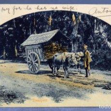 Postales: POSTAL SAMARANG JAVA INDIAS HOLANDESAS TRANSPORT CARRO VACAS ESCRITA 1911. Lote 195297842