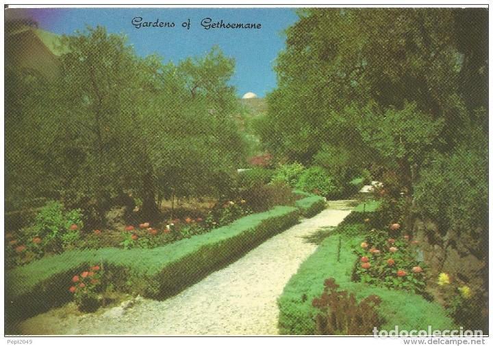 == C448 - POSTAL - JERUSALEM - GARDENS OF GETHSEMANE - OLD CITY (Postales - Postales Extranjero - Asia)