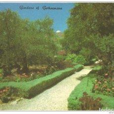 Postales: == C448 - POSTAL - JERUSALEM - GARDENS OF GETHSEMANE - OLD CITY. Lote 205339861