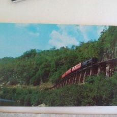 Postales: POSTAL. TREN THAI DEAD RAILWAY KANCHANABURI TAILANDIA. NO 1447. SIN CIRCULAR. POST CARD. Lote 218712853