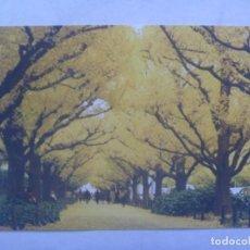 Postales: POSTAL DE TOKYO ( JAPON ). Lote 245510450