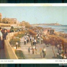 Postales: NUMULITE P0342 POSTAL TEL AVIV ON THE SEASIDE ISRAEL. Lote 245723280
