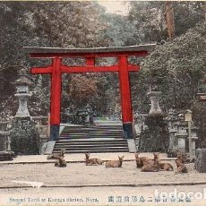 Postales: JAPÓN - NARA - SANTUARIO KASUGA . SEGUNDO TORIL. Lote 269032273