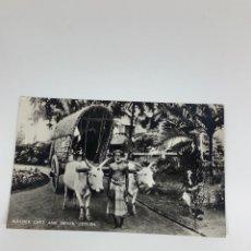 Postales: POSTAL CEYLAN, SRI LANKA PLATÉ NUM 68. BULLOCK CART AND DRIVER. ÉTNICA. Lote 269118823