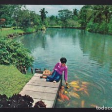 Postales: FILIPINAS. MINDANAO. DAVAO. *IÑIGO FARM* NUEVA.. Lote 270242393
