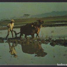 Postales: INDONESIA. BALI. *A BALINESE FARMER...* NUEVA.. Lote 271571298