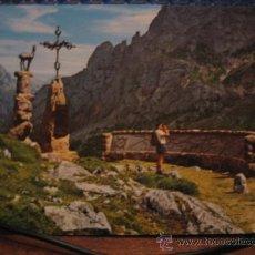 Postkarten - PICOS DE EUROPA - 7968940