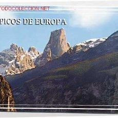 Cartes Postales: PICOS DE EUROPA. ASTURIAS. NARANJO DE BULNES. Lote 1855775