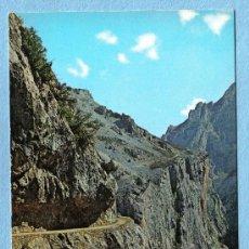 Postales: PICOS DE EUROPA. LOS COLLADOS. FOTO ALSAR. Lote 12888679