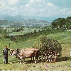 Postales: PAISAJE MONTAÑES - CARRETA TIPICA - GARCIA GARRABELLA Nº 1211 -. Lote 17102188