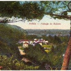 Postales: POSTAL - AVILES (ASTURIAS) - PAISAJE DE RAICES - VISTA PARCIAL. Lote 28011589