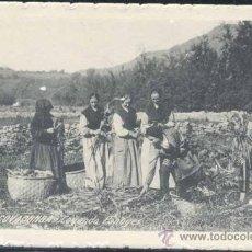 Postales: COVADONGA (ASTURIAS).- COYENDO PANOYES. Lote 29318511