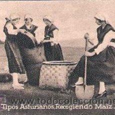 Postales: POSTAL ORIGINAL DECADA DE LOS 30. OVIEDO, ASTURIANOS RECOGIENDO MAIZ. Nº 342. VER EXPLICACION.. Lote 30146314