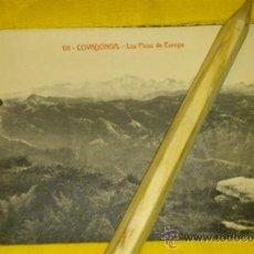 Postales: POSTAL-FOTOTIPIA NUM 101 COVADONGA, LOS PICOS DE EUROPA. Lote 33220899