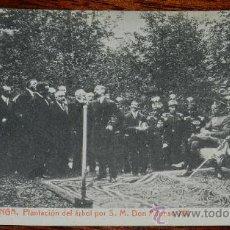 Postales: ANTIGUA POSTAL DE COVADONGA (ASTURIAS) , PLANTACION DEL ARBOL POR S. M. DON ALFONSO XIII- THOMAS 8 -. Lote 36283673