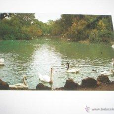 Postales: POSTAL-GIJÓN-ASTURIAS-PARQUE DE ISABEL LA CATÓLICA(LAGO)-1967-NUEVA-.. Lote 42776890