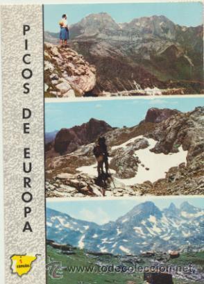 PICOS DE EUROPA. FRANQUEADO Y FECHADO EN 1968. (Postales - España - Asturias Moderna (desde 1.940))