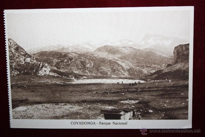ANTIGUA POSTAL DE COVADONGA. ASTURIAS. PARQUE NACIONAL. SIN CIRCULAR (Postales - España - Asturias Antigua (hasta 1.939))