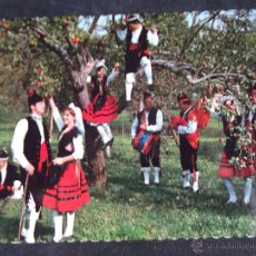 Cartes Postales: ASTURIAS-V5-NUEVA-FOLKLORE ASTURIANO-Nº340. Lote 52588849
