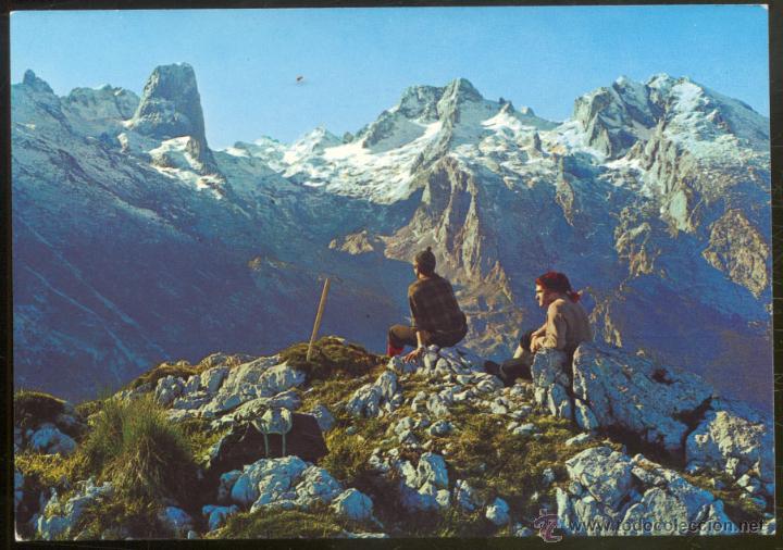 34 - PICOS DE EUROPA.- PANORAMICA DEL MACIZO CENTRAL. PEÑA VIEJA- NARANJO DE BULNES (Postales - España - Asturias Moderna (desde 1.940))