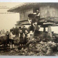 Postales: POSTAL OVIEDO - COJIENDO LOS PRESEOS DE LA LLABRANZA - FOTOTIPIA DE HAUSER Y MENET. Lote 84452732