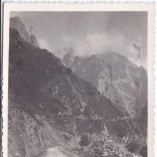 Postales: POSTAL FOTOGRÁFICA. PICOS DE EUROPA, ASTURIAS. EDICIONES SAN JUAN. Lote 86418168
