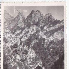 Postales: POSTAL FOTOGRÁFICA. PICOS DE EUROPA, ASTURIAS. EDICIONES SAN JUAN. Lote 86425508