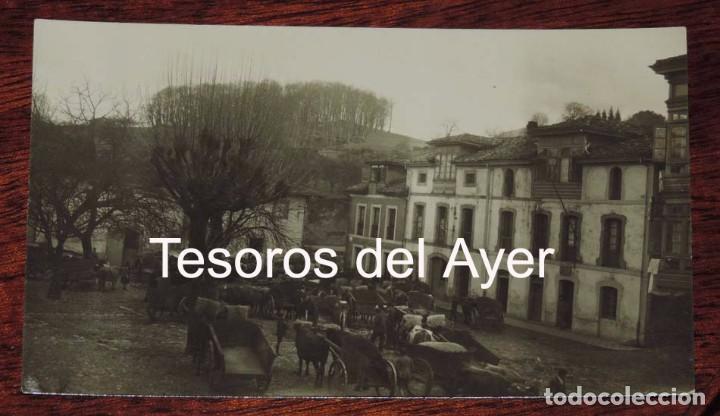 FOTO POSTAL DE NAVA, ASTURIAS, MERCADO DE GANADO, NO CIRCULADA. (Postales - España - Asturias Antigua (hasta 1.939))