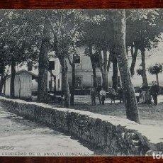 Postales: POSTAL DE CALDAS DE OVIEDO, LA ALAMEDA, PROPIEDAD DE D. ANICETO GONZALEZ, NO CIRCULADA, SIN DIVIDIR. Lote 101185167