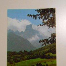 Postales: POSTAL DE PICOS DE EUROPA. Nº 40. EL NARANJO DE BULNES. EDICIONES SICILIA. TDKP2. Lote 101980063