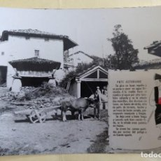 Postales: POSTAL POTE ASTURIANO EDICIONES LA ESCRIBANIA FOTO ALARDE SIN CIRCULAR. Lote 126462327