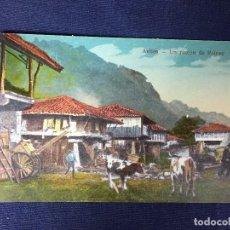 Postales: POSTAL AVILÉS ASTURIAS UN RINCÓN DE RAICES NO ESCRITA NI CIRCULADA COLOREADA. Lote 130155399