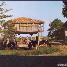 Cartes Postales: ASTURIAS-V24-CIRCULADA-HORREO ASTURIANO. Lote 134985262