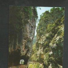 Postales: POSTAL SIN CIRCULAR - PICOS DE EUROPA - DESFILADERO RIO CARES - EDITA SANDI. Lote 140930986