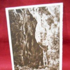 Postales: ANTIGUA POSTAL - COVADONGA - CUEVA DE ORANDI - SIN CIRCULAR -. Lote 142085250