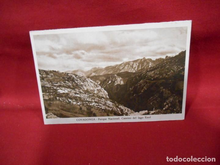 ANTIGUA POSTAL - COVADONGA - PARQUE NACIONAL CAMINO DEL LAGO ENOL - SIN CIRCULAR - (Postales - España - Asturias Antigua (hasta 1.939))