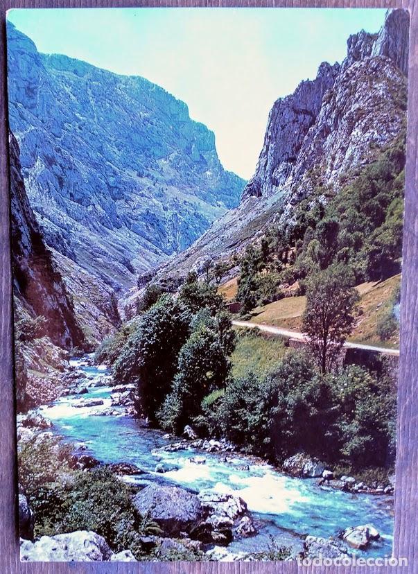RUTA DESFILADERO DEL CARES. 283 REGIÓN DE CAMARMEÑA. ED. ALCE. NUEVA. COLOR. (Postales - España - Asturias Moderna (desde 1.940))