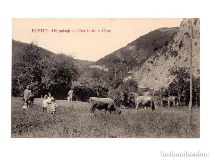 BUSTIO.(ASTURIAS).- UN PAISAJE DEL BARRIO DE LA CRUZ (Postales - España - Asturias Antigua (hasta 1.939))