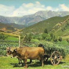 Postales: ASTURIAS - PICOS DE EUROPA (AÑOS 70). Lote 150117298