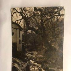 Cartes Postales: MUROS DEL NALON (ASTURIAS) POSTAL. PAISAJE MUJER EN EL RÍO (H.1910?) EDITA: PIRES. Lote 155310382