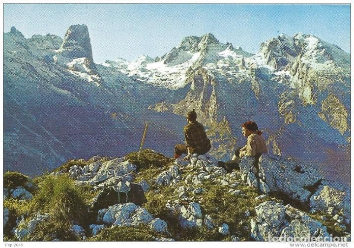== PJ21 - POSTAL - PICOS DE EUROPA - PANORAMICA DEL MACIZO CENTRAL - PEÑA VIEJA - NARANJO DE BULNES (Postales - España - Asturias Moderna (desde 1.940))