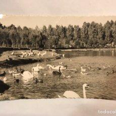 Postales: GIJÓN (ASTURIAS) POSTAL FOTOGRAFÍCA NO.162, ESTANQUE DE LOS CISNES EDITA EDICIONES ARRIBAS (H.1960?). Lote 159712634